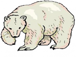 ours-blanc